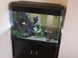 Fish tank with cabinet 125l