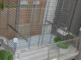 Vision bird cage Seaham