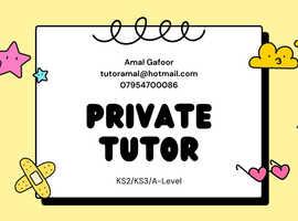 Experienced tutor (KS1/KS2/GCSE/A-Levels)