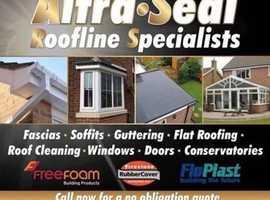 Roof / Driveway washing