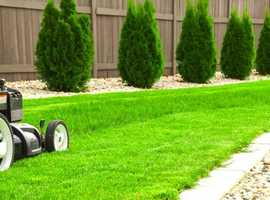 Evergreen gardening services