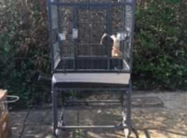 Bird cage for parrots etc