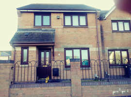 3 bedroom house adamsdown