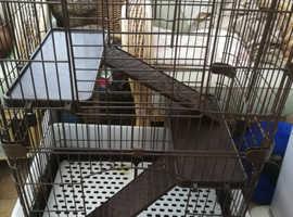 Chinchilla/ rat cage