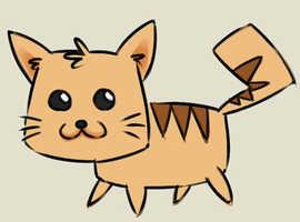 Kitten wanted
