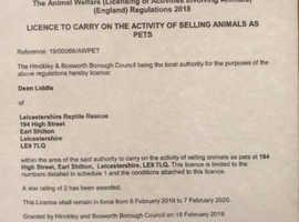 Leicestershire reptile rescue/rehabilitation