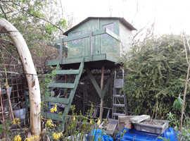 tree houses garden pubs ect owt intrestingbuilt i situe
