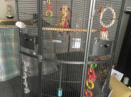 Corner parrot cage.