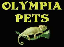 Olympia Pets Ltd