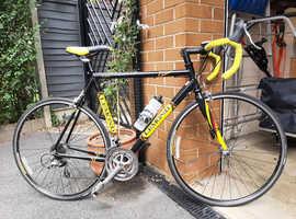 Vintage Greg LeMond 55cm Nevada City road racing bike