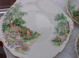 "Beautiful Rosslyn China ""Wayside"" pattern - excellent condition - never used"