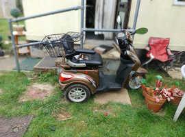 Mobility trike