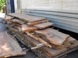 Beechwood wany edged timber planks