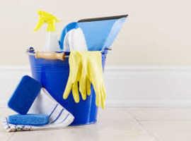 Domestic Help