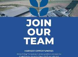 HARVEST OPPORTUNITIES