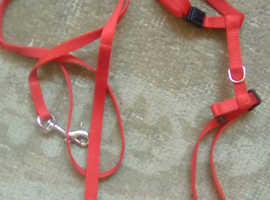Very small dog harness