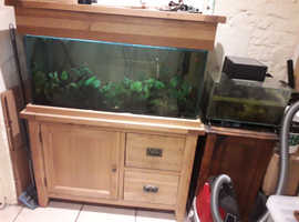 tropical fish tank with solid oak cabinet and smaller newt tank