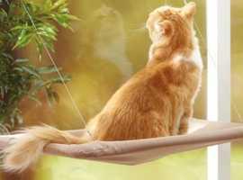 Cute Pet Hanging Beds Cat Sunny Seat Window Mount