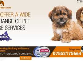 Professional dog walker - spaces available