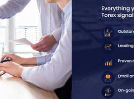 Super Accurate Forex Trading signals & Mentorship
