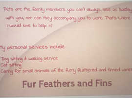 Fur Feathers and Fins- Pet sitting and Dog walking service