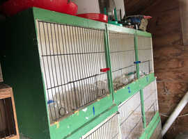 canary breeding cages for sale