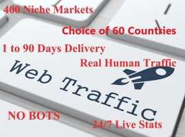 25,000 human Visitors! HIGHLY TARGETED website traffic! 400 niches 60 countries