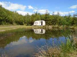 Round Pond Wood for sale: 1.8 acres, a gem of a woodland with a wild-life pool