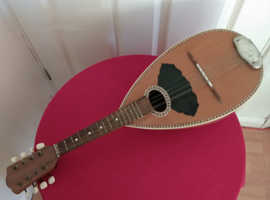 Stringed musical instrument beautifully made
