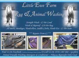 Rug & Animal Washing