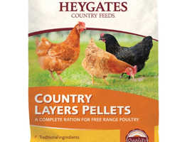 Chicken feed, chickens / hens for sale