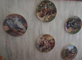 Wildlife Wall Plates x 5