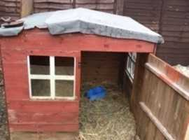 Large hutches for sale . Wooden Wendy house and 5 foot hutch . £50 for the Wendy house and £25 for the 5 foot