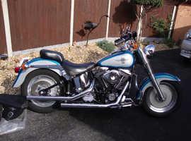 1995 Harley Davidson  fat boy  evo motor the best ,,
