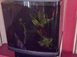 90ltr Aquarium (marine or tropical)