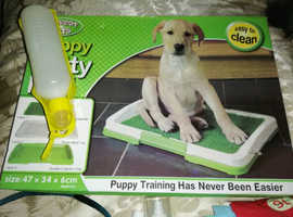 Dog accessories, puppy training pad