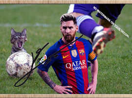 LIONEL MESSI and the crazy Kitten!