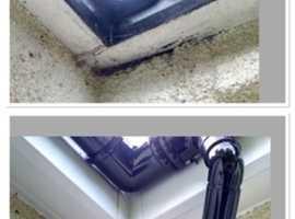 Gloneys coatings