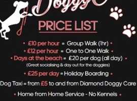 Dog walking, Dog grooming and boarding