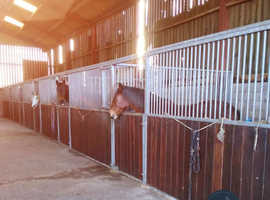 RETIREMENT LIVERY YARD/ OVER WINTER HORSES £235 a month barn/ £300 stables in CHESHIRE