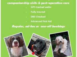 One to One Bespoke Dog Walking and Care