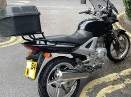 Honda CBF250 2004, One owner from new! Superb commuter bike NEW MOT