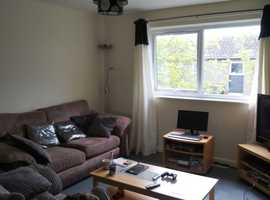 1 bed flat in Cornwall for swap