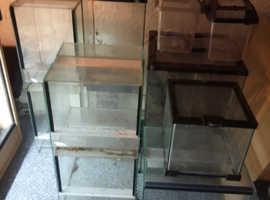 Small reptile and invertebrate enclosures