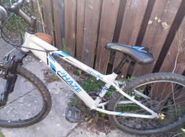 Adult Mountain Bike Almost New!