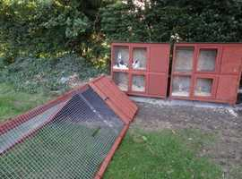 TULIP LODGE - Small Pet Boarding - Rabbits, Guinea Pigs, Hamsters, Gerbils etc