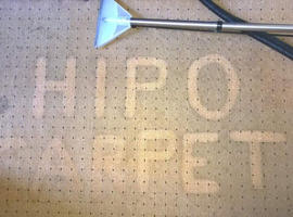 HIPO - Carpet, Upholstery, Car Interior and House Cleaning