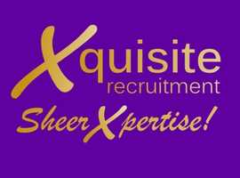 Sheer Xpertise for companies wishing to Recruit throughout the UK.