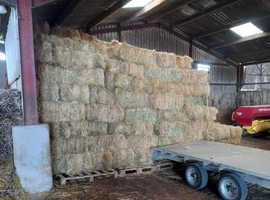 Small Hay Bales For Sale******