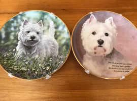Danbury Mint Westie plates